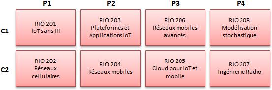 https://doc-synapses.telecom-paristech.fr/FiliereRIO_2019.png