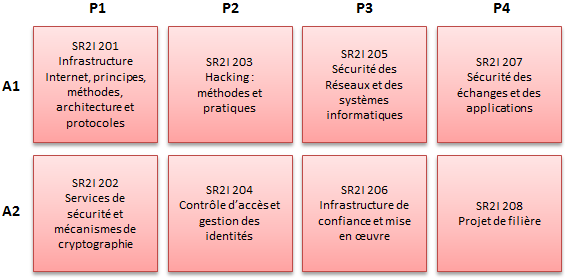 https://doc-synapses.telecom-paristech.fr/FiliereSR2I_2019.png